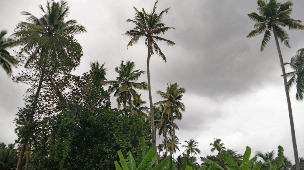 keralas-cloudy-skies